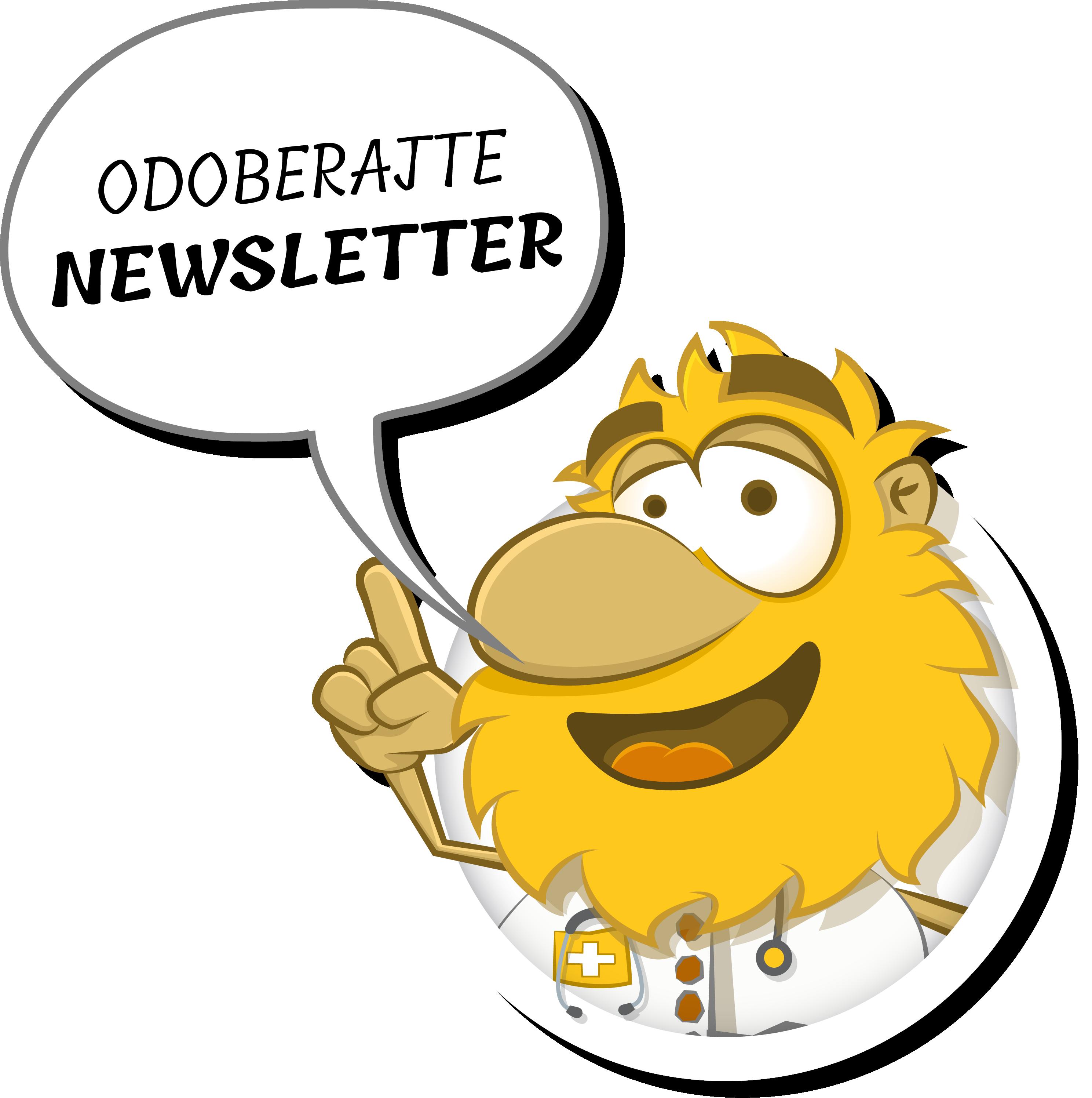 devit-newsletter